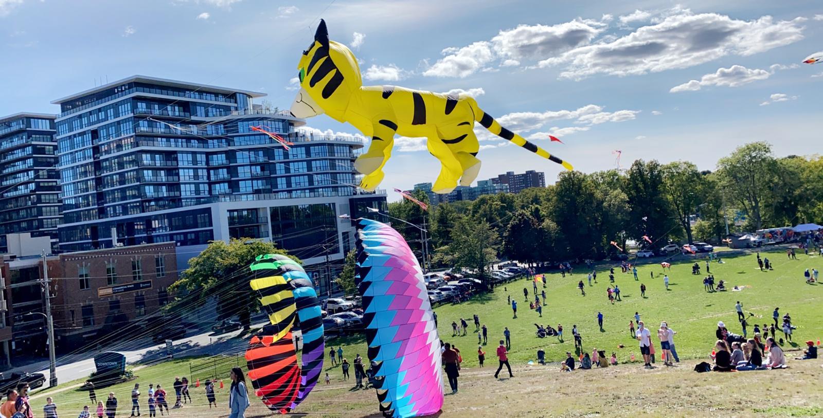 East Coast Kite Festival 2021